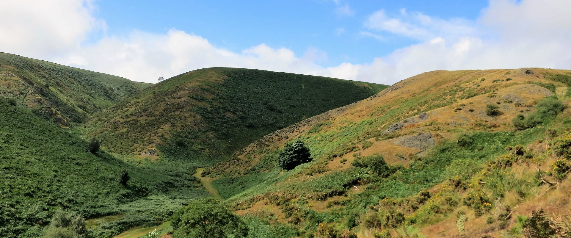 Long Mynd Walking Weekend