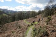 Llangollen Walks
