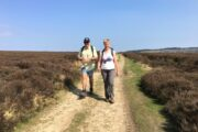 North York Moors walks