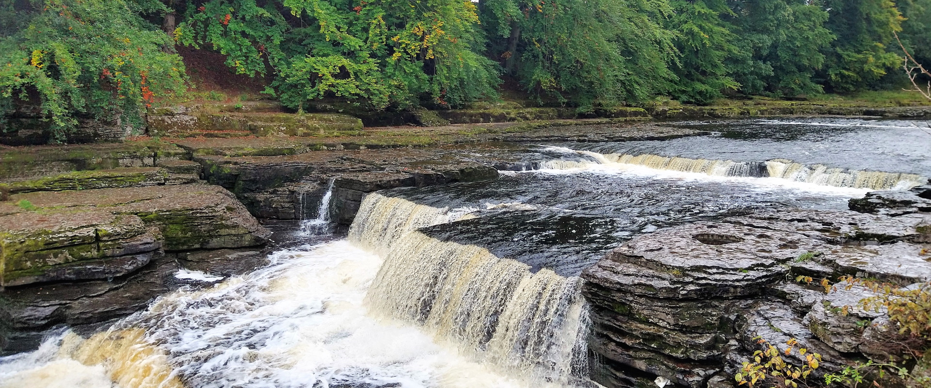 Aysgarth Falls Walking Weekend
